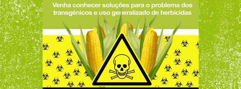 Monsanto sabia há 17 anos que o Glyfosato era cancerígeno