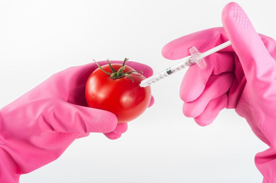 Canadá: os pesticidas, os OGM e o CETA