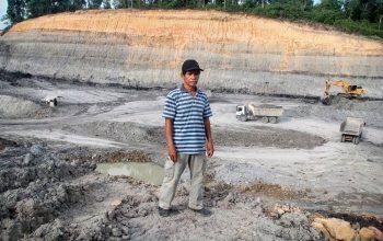 indonesia - Uma floresta destruída pelo ISDS