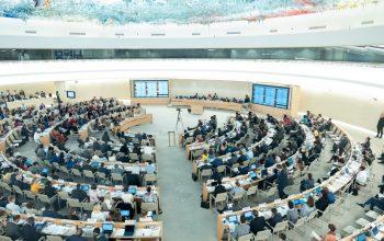 Apelo Tratado Vinculativo ONU - Tratado Vinculativo da ONU