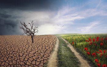 mudança climatica - retorno à normalidade