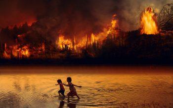 amazonia em chamas