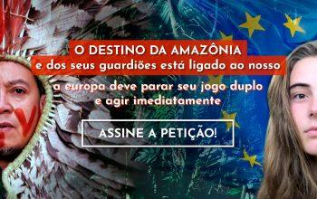 Peticao internacional Mercosul