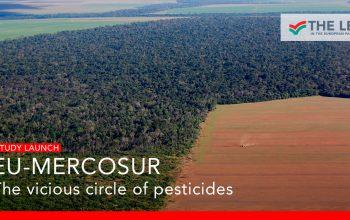 O ciclo vicioso dos pesticidas